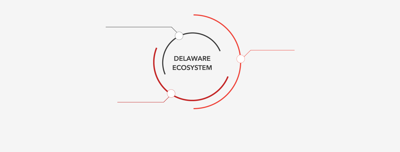 Delaware Ecosystem